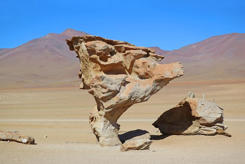 Steenboom of Arbol DE Piedra, Beroemde Rotsvorming bij Eduardo Avaroa Andean Fauna National-Reserve, Sur Lipez, Bolivië stock foto's