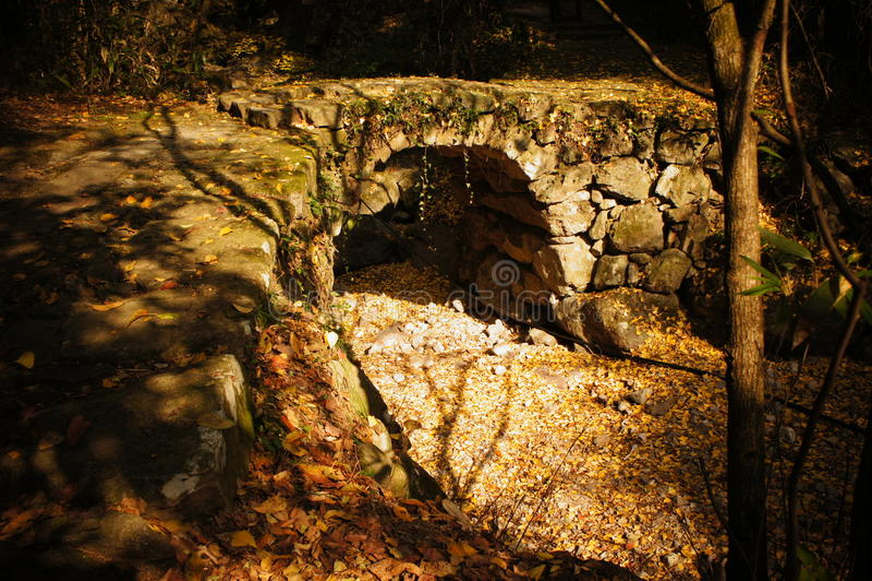 Steenbrug met gevallen bladeren royalty-vrije stock foto