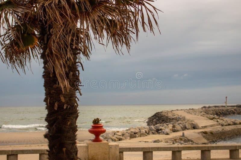 Steendam met vuurtoren en palmvoorgrond Pijler op kust in de avond Dijk op tropische kust stock afbeelding