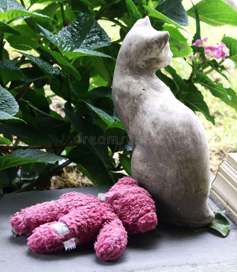 Steenkat met doorweekte roze teddybeer op portiek stock foto