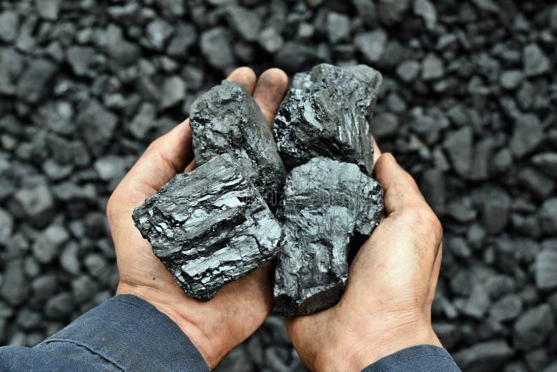 Steenkool in de handen van arbeidersmijnwerker stock foto