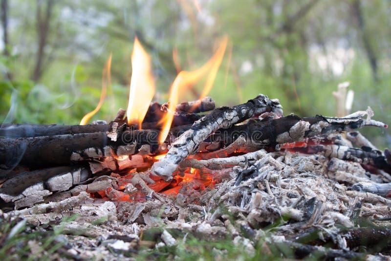 Steenkool en houten as stock foto's