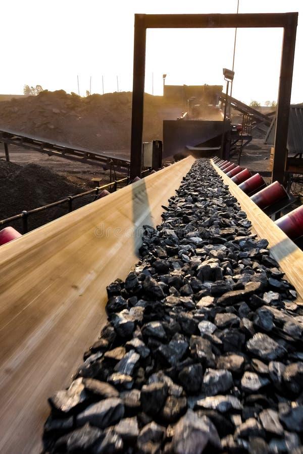 Steenkoolerts op een transportband voor verwerking stock foto's