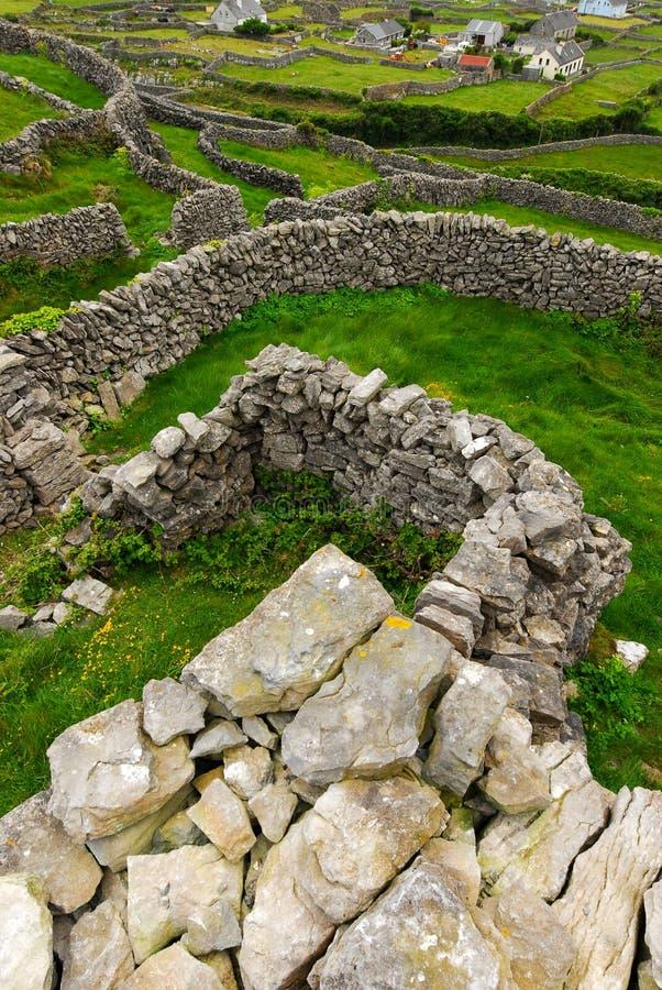 Steenmuren op Aran Islands royalty-vrije stock fotografie