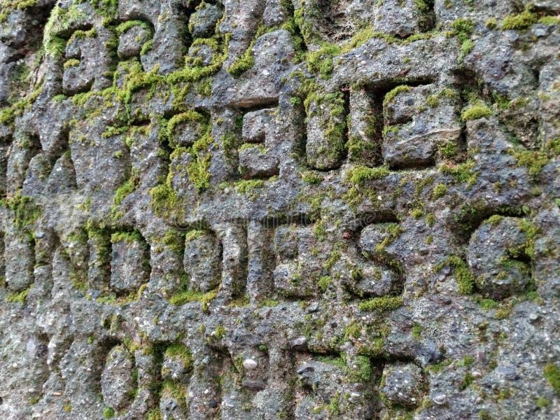 steenmuur met mos wordt behandeld dat royalty-vrije stock afbeeldingen