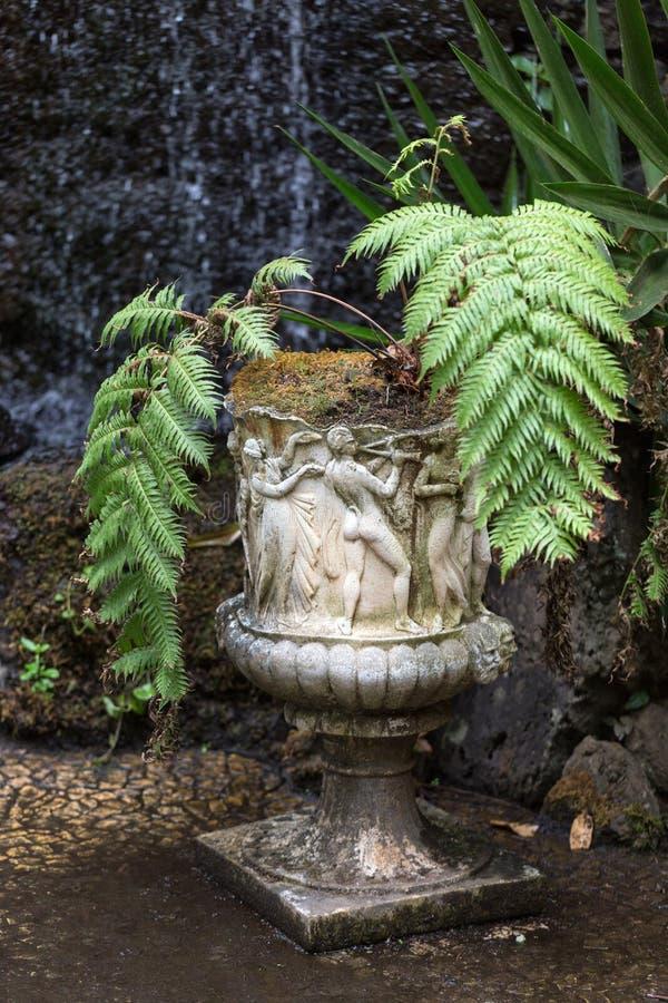 Steenstandbeelden en varens in Monte Palace Tropical Garden, Funchal, Madera, royalty-vrije stock foto's