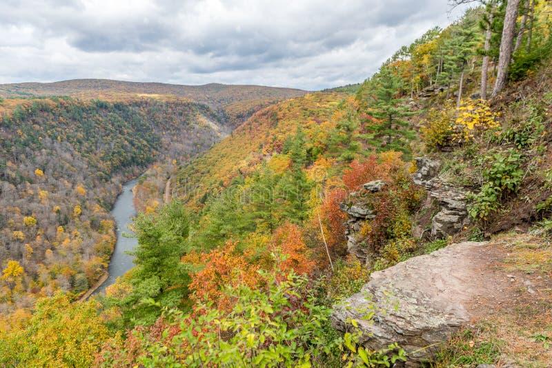 Steentoppositie over de Canion van Pine Creek stock foto's
