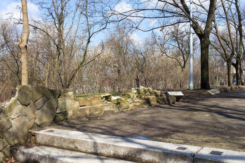 Steentreden en weg door het park stock afbeelding
