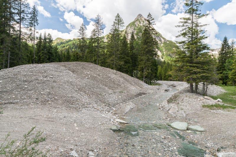 Steenuitgraving van een bergstroom in Schlierersee in het Natur-park Riedingtal Zederhaus, Oostenrijk stock afbeeldingen