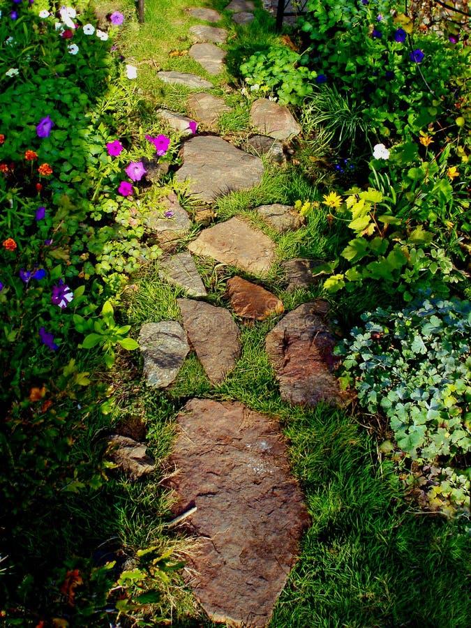 Steenweg in het midden van bloemen royalty-vrije stock fotografie