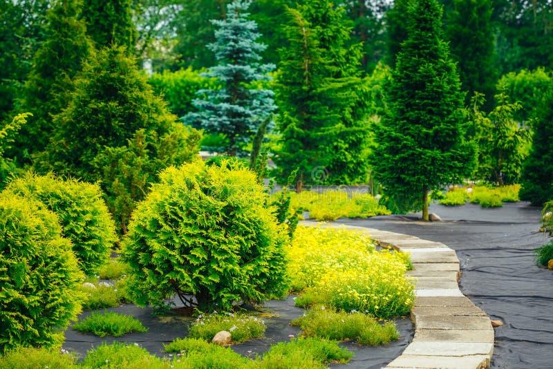 Steenweg in tuinpark Decoratieve Struiken binnen royalty-vrije stock afbeelding