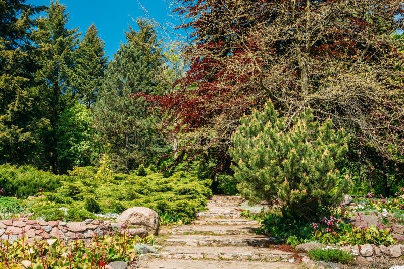 Steenweg in tuinpark Het ontwerp van de tuin royalty-vrije stock foto