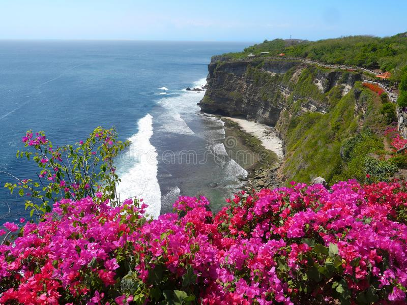 Steep cliff with lush vegetation Bali Indonesia. Ocean view with big surf Red Bougainvillea flowers royalty free stock images