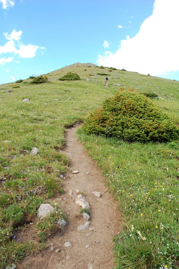 Steep hiking trail royalty free stock images