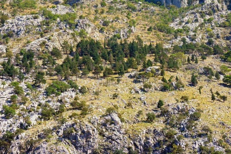 Steep mountain slope on sunny autumn day, background royalty free stock photo