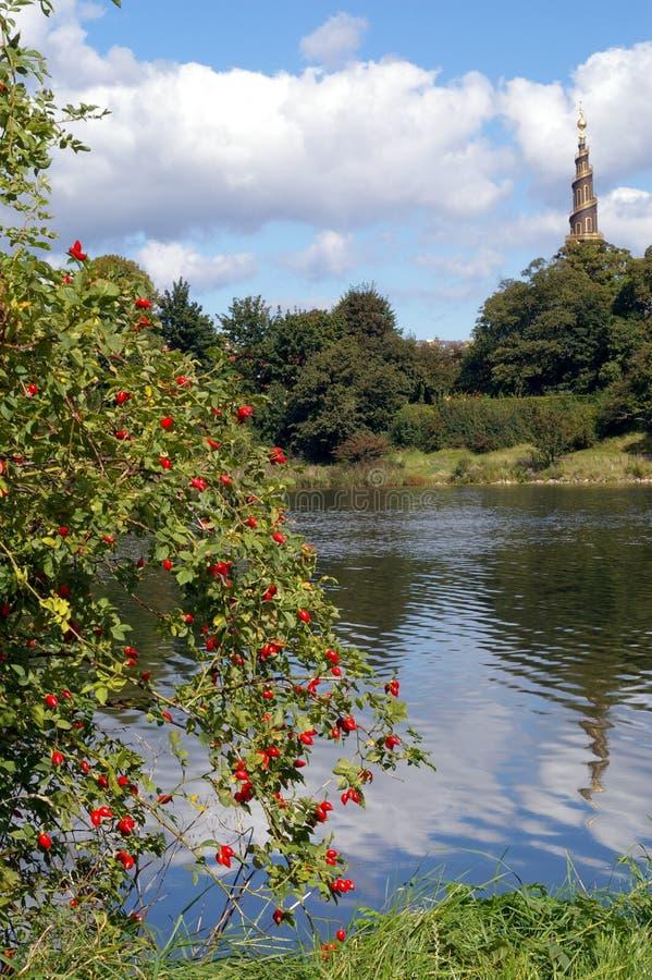 Download Steeple Della Chiesa Di Vaar Frelsers Immagine Stock - Immagine di alberi, albero: 3128797