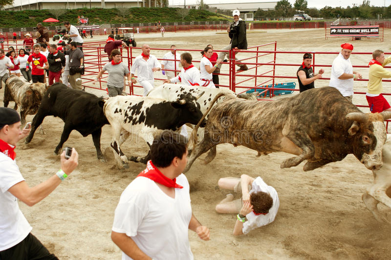 Download Steer Leaps Over Man Trampled In Georgia Bull Run Editorial Photography - Image: 34763277
