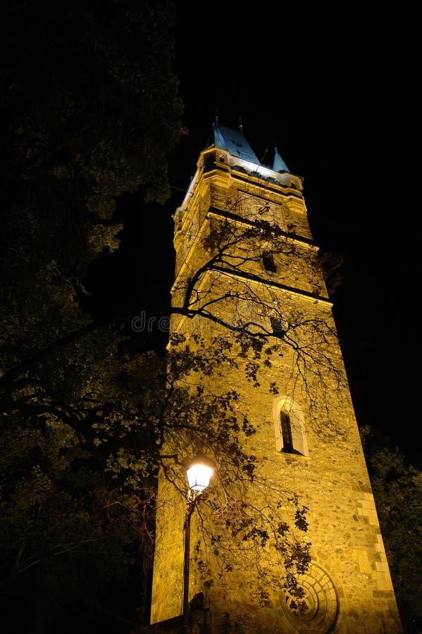 Stefan Cel Mare Tower Free Stock Image