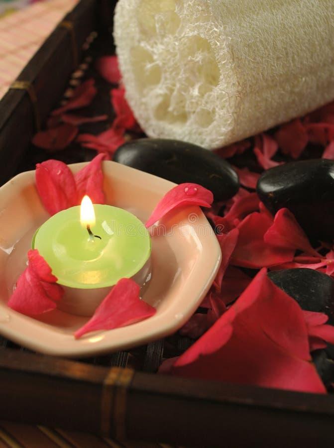 steg blom- petared för badet royaltyfri foto