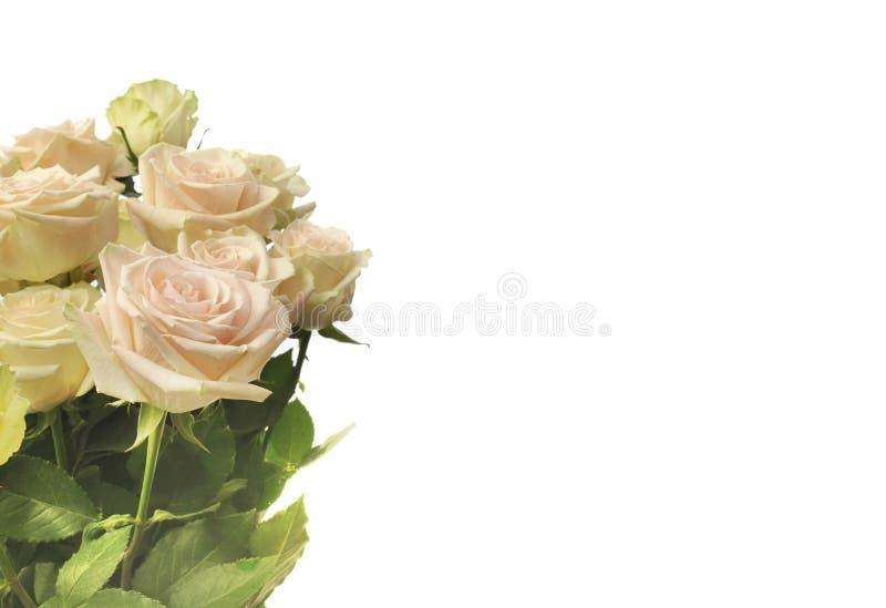 Steg blommabukettbakgrund royaltyfri foto
