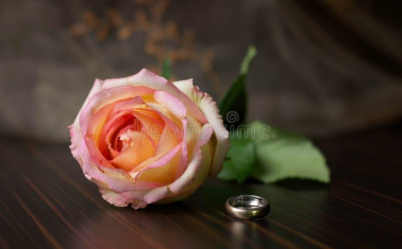 Steg blomman och vigselringen fotografering för bildbyråer