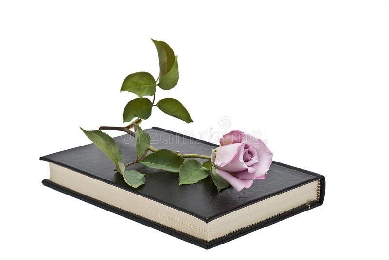 steg den liggande pinken för boken fotografering för bildbyråer