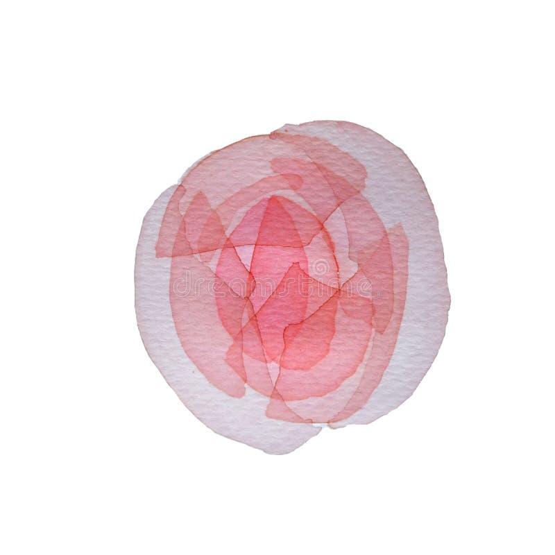 Steg den rosa genomskinliga i lager blomman för vattenfärgen på vit bakgrund vektor illustrationer