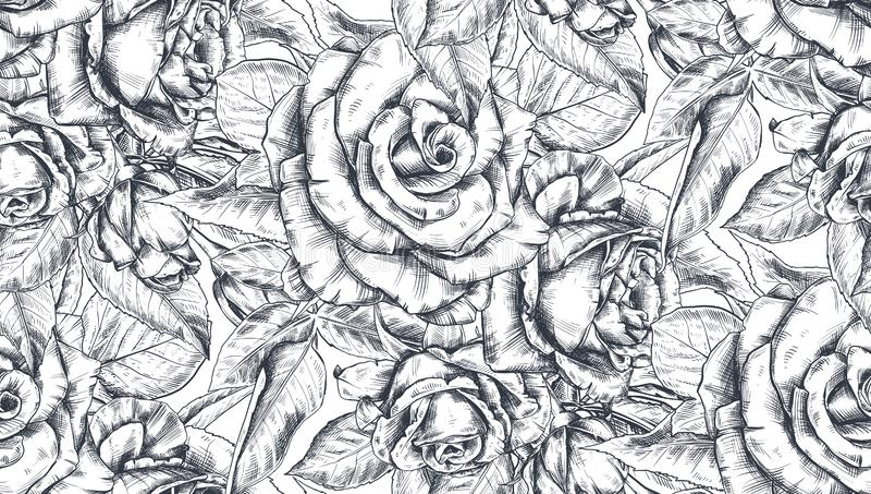 Steg den sömlösa modellen för vektorn med den drog handen blommor och sidor på vit vektor illustrationer