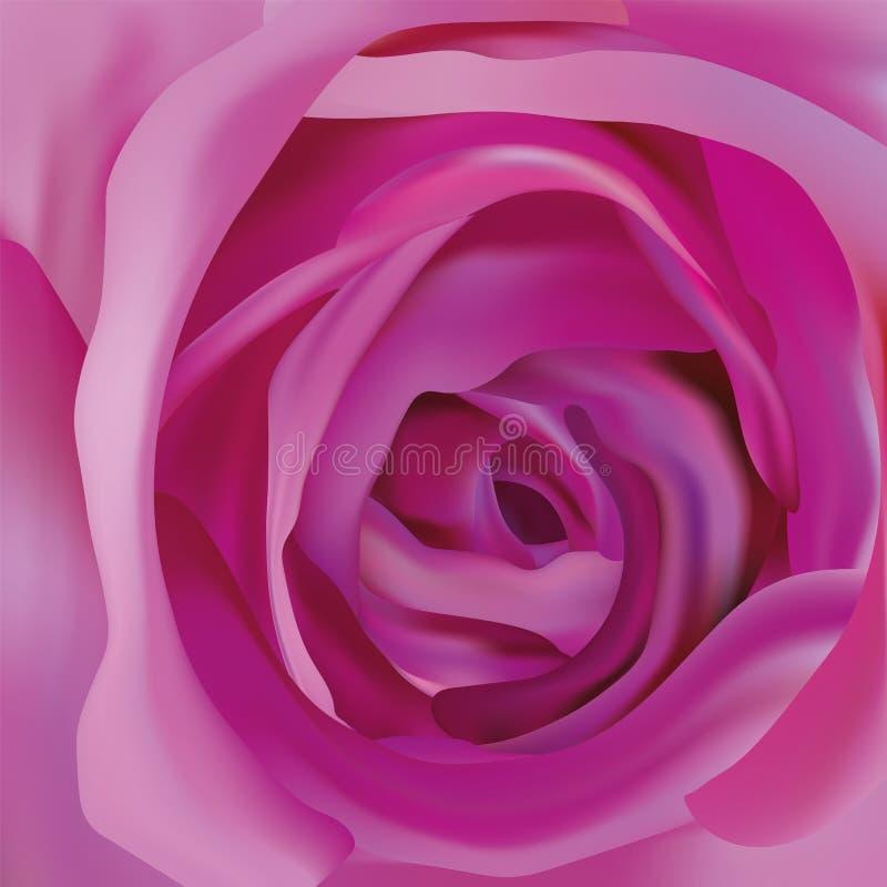 Steg härliga lilor för mitt abstrakt begrepp steg Lilarosslut upp h?rlig blomma realistisk ros 3d royaltyfri illustrationer