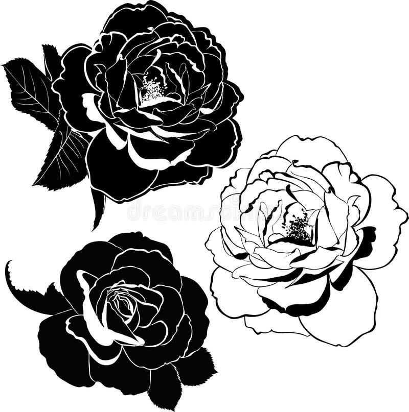 steg isolerade blommor vektor illustrationer