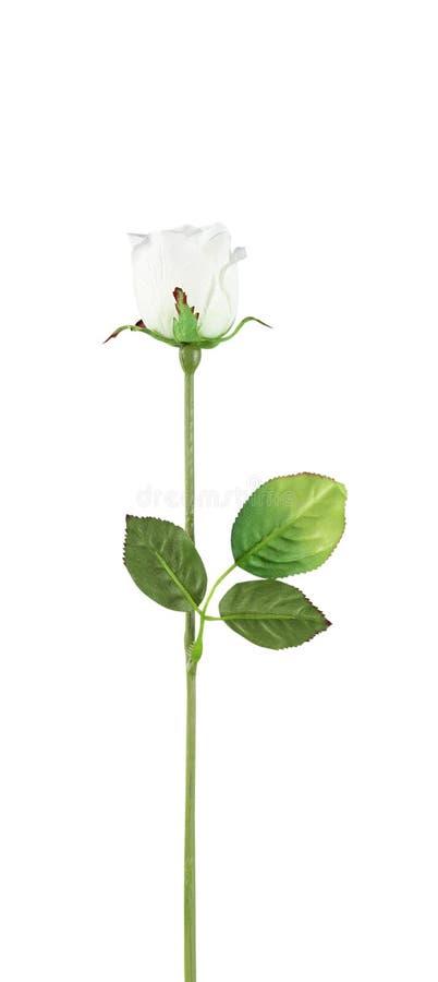 Steg, konstgjorda blommor som isolerades på vit bakgrund royaltyfri bild
