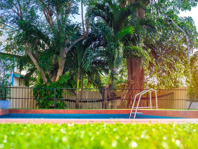 Stege för hastigt greppstänger i utomhus- simbassäng med den tropiska palmträdet i trädgården royaltyfri bild
