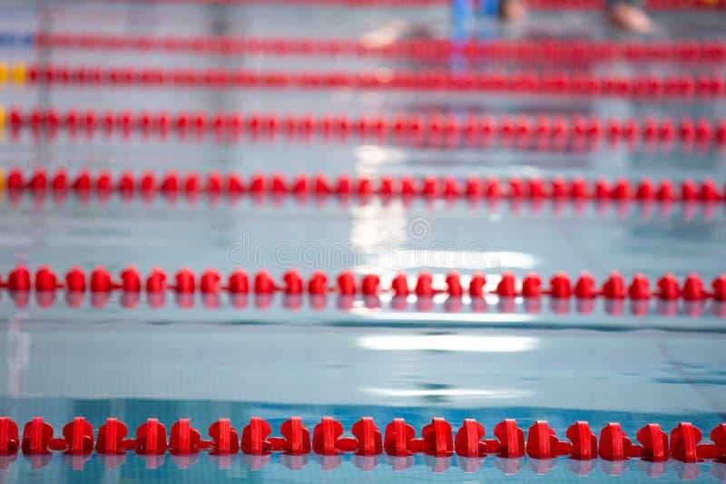 Stegen van een de concurrentie zwembad Blauw water royalty-vrije stock afbeelding