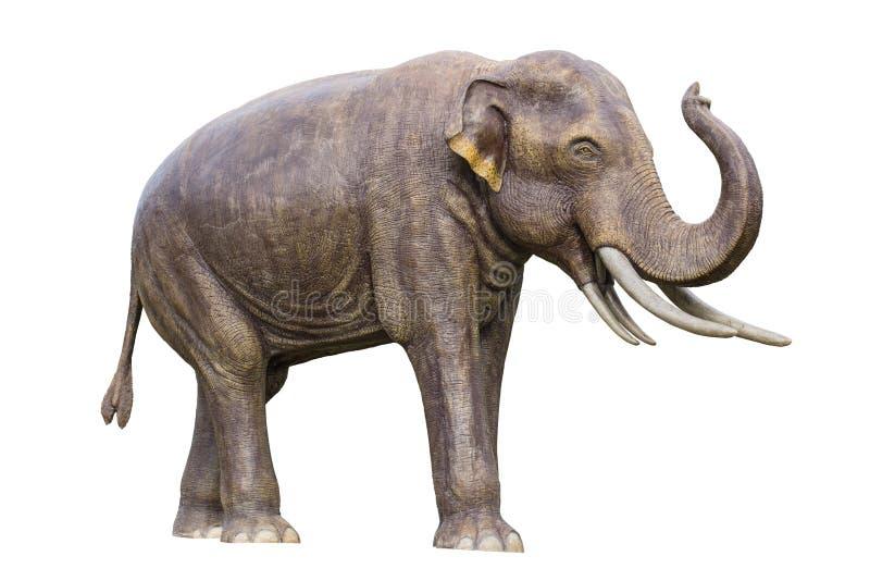Stegolophodon vier ivoor uitgestorven primitieve olifant stock afbeeldingen
