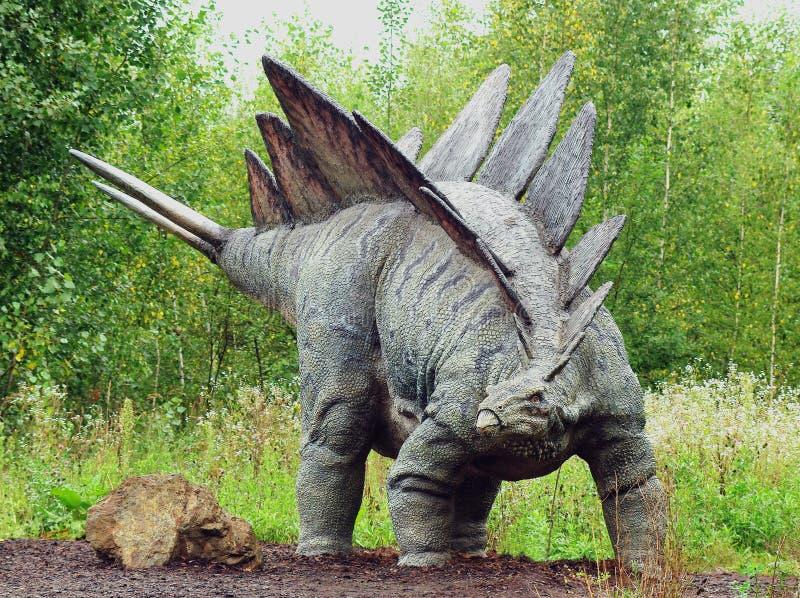 Stegosaurus fotografia stock libera da diritti