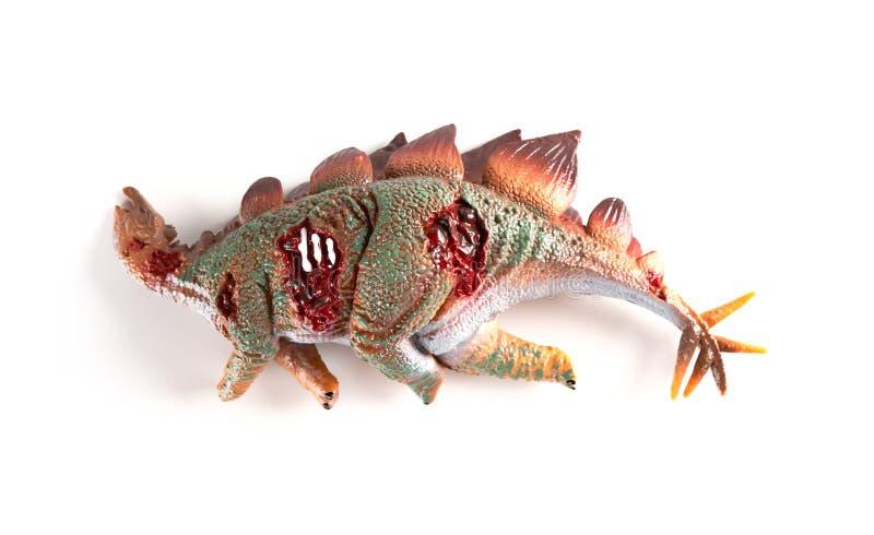 Πτώμα Stegosaurus στο άσπρο υπόβαθρο στοκ φωτογραφία με δικαίωμα ελεύθερης χρήσης