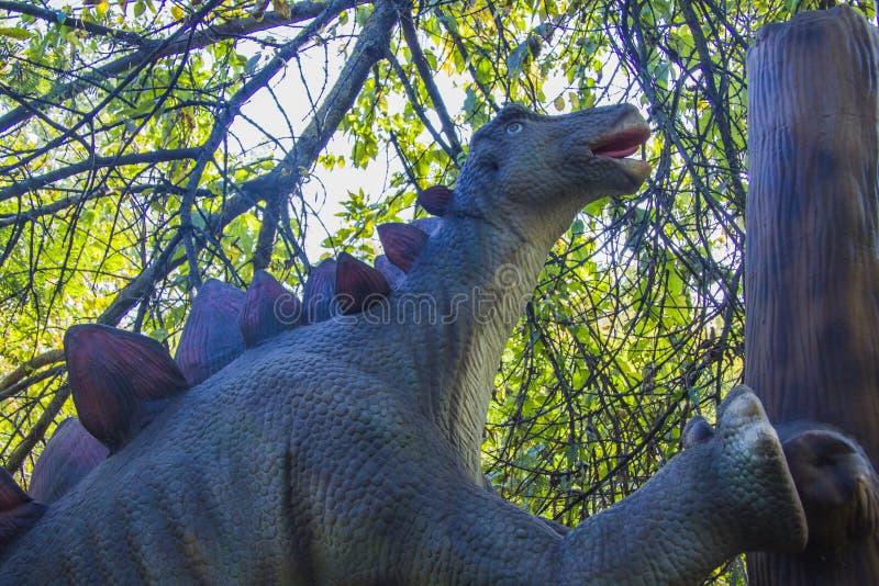 stegosaurus στοκ φωτογραφίες με δικαίωμα ελεύθερης χρήσης