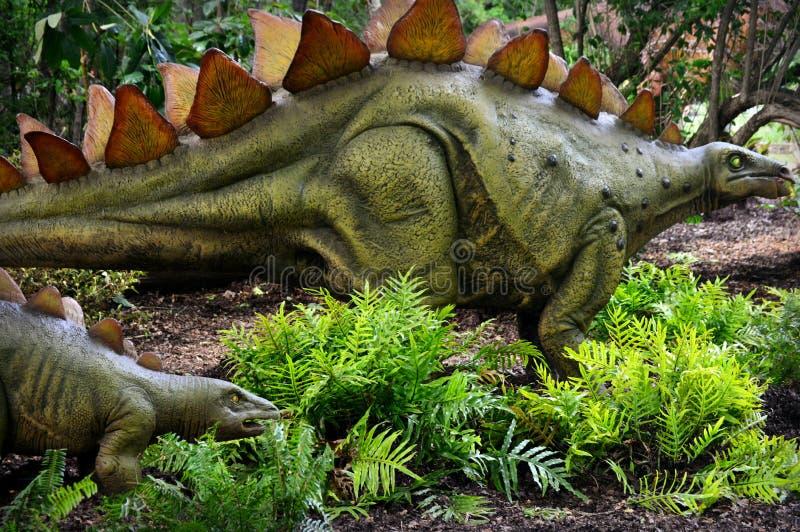 stegosaurus στοκ φωτογραφίες
