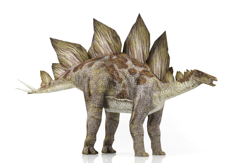 stegosaurus stock illustratie