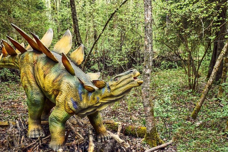 Stegosaurus do dinossauro fotos de stock