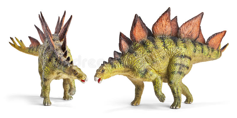 Stegosaurus, genus of armored dinosaur with clipping path. Stegosaurus, genus of armored dinosaur. Side and front view, dinosaurs toy, isolated on white royalty free stock photos