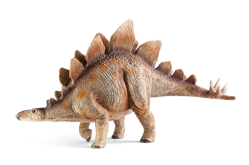 Stegosaurus, genus of armored dinosaur. Side view, dinosaurs toy, isolated on white background with clipping path stock photography