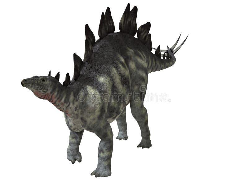 Stegosaurus Isolated stock illustration