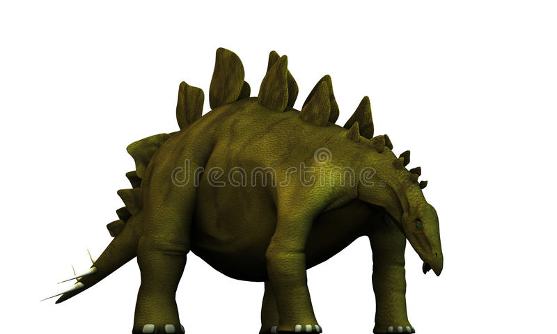 Download Stegosaurus stock illustration. Image of reptile, paleontology - 33212344