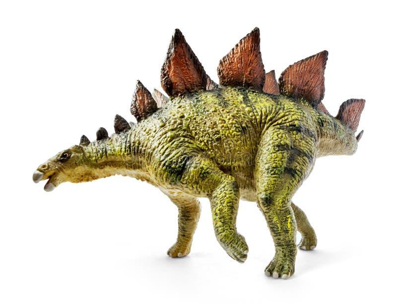 Stegosaurus, Klasse des gepanzerten Dinosauriers lizenzfreie stockfotos