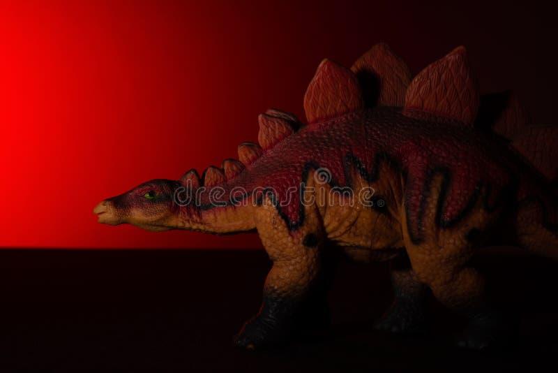Stegosaurus med fläckljus på huvudet och röda ljuset på bakgrund royaltyfri fotografi