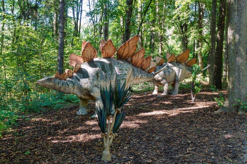 Stegosaurus prehistórico del dinosaurio en naturaleza fotos de archivo