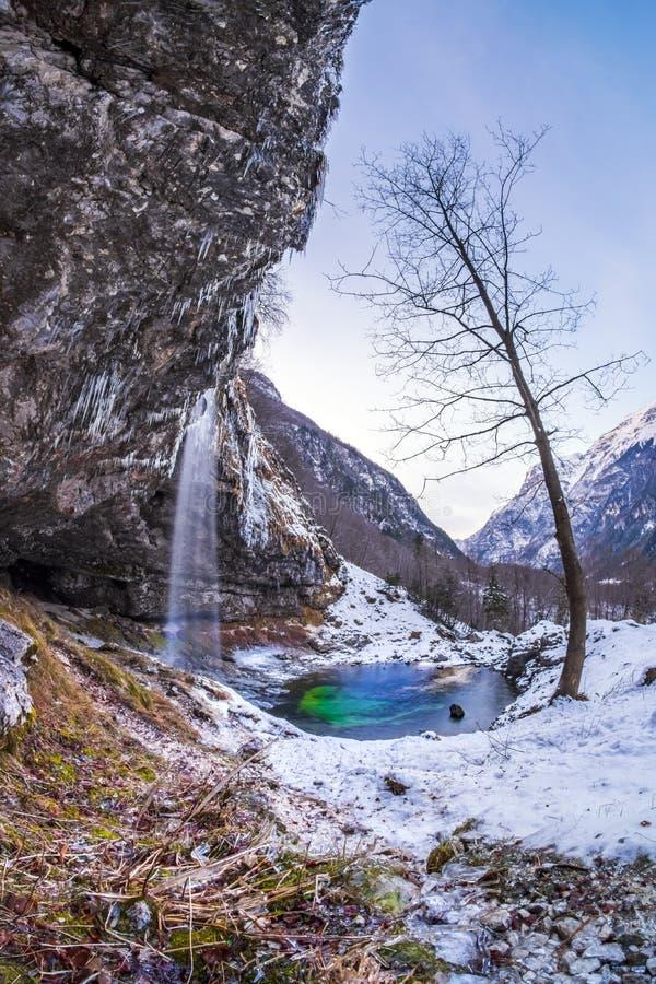 Stehender allein naher Wasserfall Goriuda des Baums im wonde des verschneiten Winters stockbild