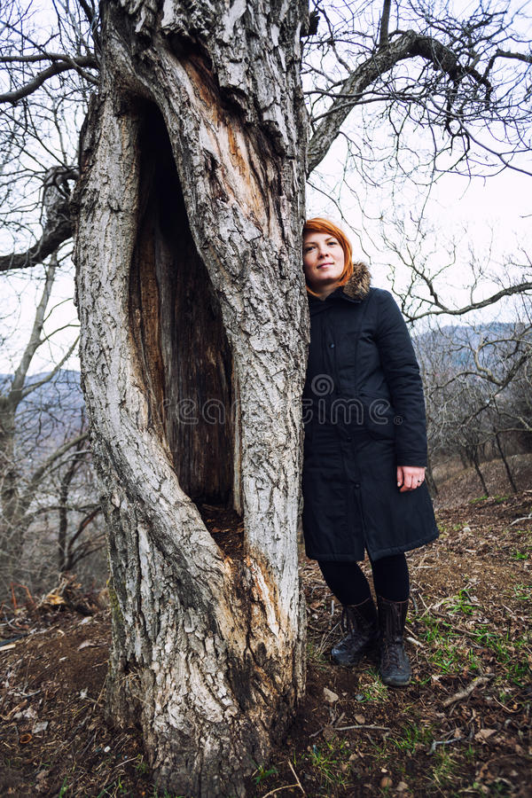 Stehender naher alter Baum lizenzfreies stockfoto