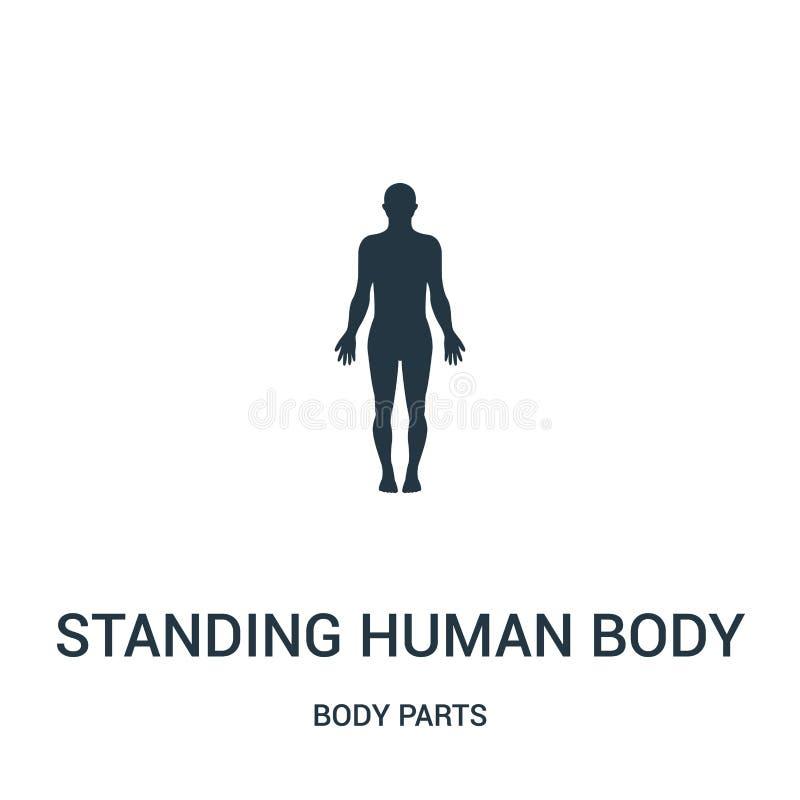 stehender Schattenbildikonenvektor des menschlichen Körpers von der Körperteilsammlung Dünne Linie Schattenbildentwurfsikone des  lizenzfreie abbildung